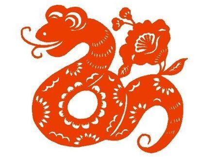 属蛇的今年多大,不同年份属蛇人年龄大全