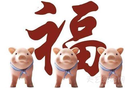 2019年属猪是什么五行 已亥年出生的五行为土